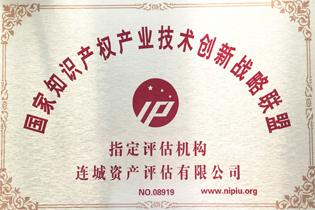 国家知识产权产业技术联盟指定评估机构